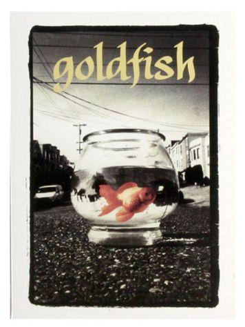 Goldfish Girl Skate DvD