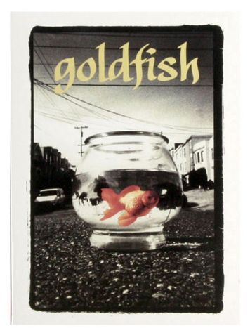 Girl Goldfish Girl Skate DvD