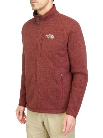 The North Face Gordon Lyons Full Zip Tech Tee LS