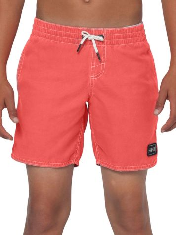 O'Neill Sunstruck Boardshorts Boys