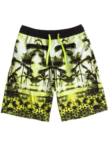 Quiksilver Photo 17 Jam Boardshort Boys