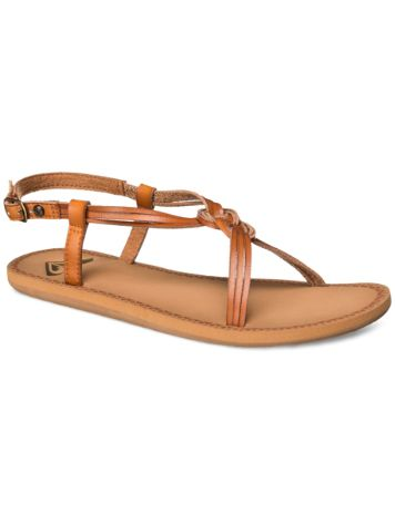Roxy Solaris Sandals