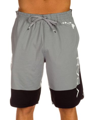 RVCA Bj Block Shorts
