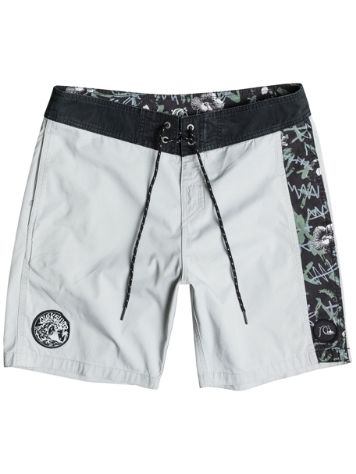 Quiksilver Turbo Dog Boardshorts