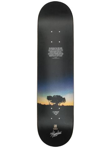 "Globe The Adventure HB 7.75"" Skateboard Deck"