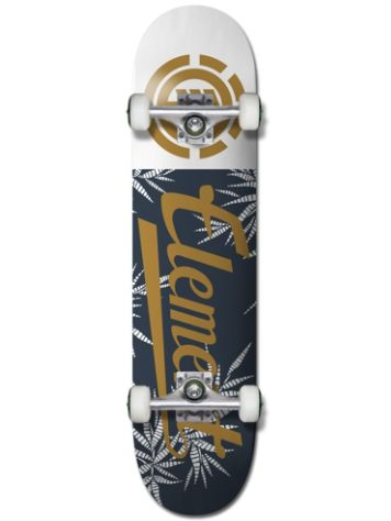 "Element Script Palm 7.75"" Complete"