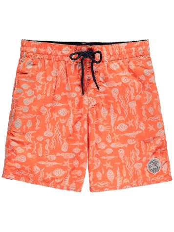O'Neill Thirst For Surf Boardshorts Boys