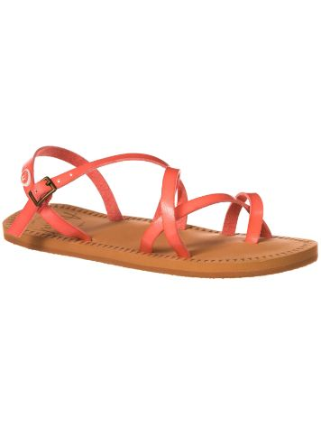 Animal Riya Sandals Women