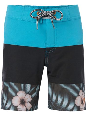 Animal Aqueous Boardshorts Jungen